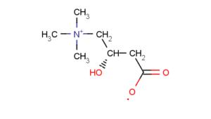 Molecola della Carnitina